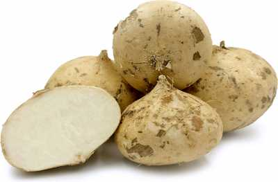 7 Interesting Facts about Jicama
