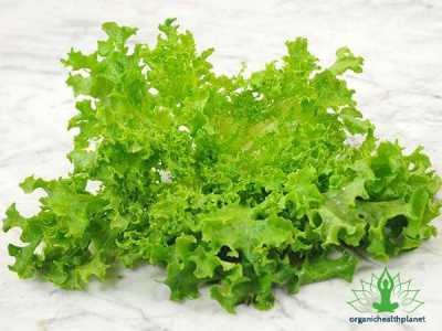 8 Surprising Benefits of Lettuce