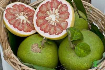 8 Surprising Benefits for Pomelo