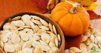 Everything you need to know about Pumpkin seeds