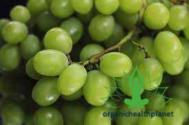 13 Best health facts about Grapes
