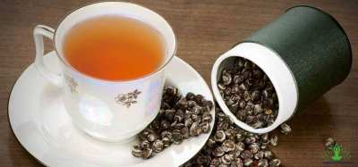 Everything there is to know about the Oolong Tea